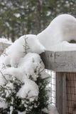 Идти снег на загородке Стоковые Изображения RF