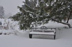 идти снег парка Стоковые Изображения