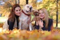 Идти с собаками Стоковая Фотография