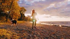 Идти с собакой в заходе солнца Молодая женщина на собаке чабана поводка австралийской на береге озера или моря сток-видео