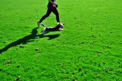 Идущая собака с девушкой Стоковая Фотография RF