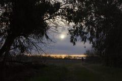 идущий заход солнца Стоковое Изображение