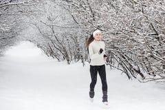 идущий снежок Стоковая Фотография
