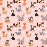 Иллюстрации вектора шаржа портрета любимчика котенка породы кота картина милой пушистой молодой прелестной животной безшовная Стоковые Фотографии RF