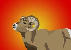 Иллюстрации козы бесплатная иллюстрация