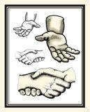 Иллюстрации руки Стоковые Фотографии RF