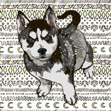 Иллюстрация лайки породы собаки Стоковые Фотографии RF