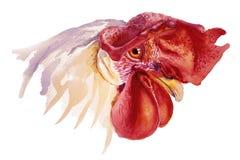 Иллюстрация акварели петуха для китайской поздравительной открытки Нового Года иллюстрация штока