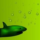 Иллюстрация акулы в предпосылке воды с пузырями на зеленой предпосылке Стоковые Изображения RF