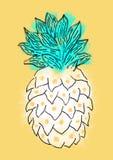 Иллюстрация ананаса Стоковое Изображение