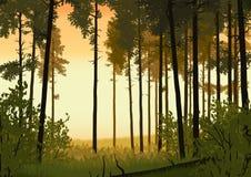 Иллюстрация ландшафта леса Стоковые Фото