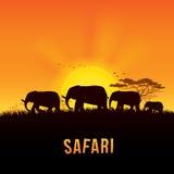 Иллюстрация вектора ландшафта Африки Стоковые Изображения RF