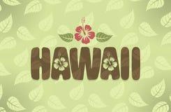 Иллюстрация вектора Гаваи в винтажных цветах иллюстрация вектора