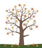 Иллюстрация вектора дерева осени Стоковые Изображения