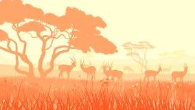 Иллюстрация вектора диких животных в африканской саванне. Стоковое Изображение
