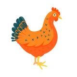 Иллюстрация вектора красного цыпленка смешная Стоковая Фотография RF