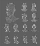 Иллюстрация вектора модели головы 3d Wireframe Стоковое Изображение