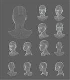 Иллюстрация вектора модели головы 3d Wireframe Стоковое фото RF