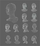 Иллюстрация вектора модели головы 3d Wireframe Стоковое Изображение RF