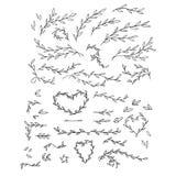 Иллюстрация вектора нежная ветвей нарисованных рукой Monochrome ботаническая винтажная иллюстрация вектора Свадьба вектора Стоковое Фото