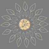 Иллюстрация вектора оранжевых кусков с листьями Стоковое Изображение RF