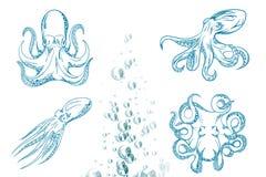 Иллюстрация вектора оригинала близкая поднимающая вверх осьминога нарисованного рукой Стоковое фото RF