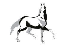 Иллюстрация вектора лошади бесплатная иллюстрация