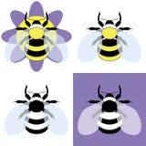 Иллюстрация вектора пчелы путать Стоковая Фотография