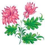 Иллюстрация вектора розового цветка Стоковая Фотография