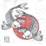 Иллюстрация вектора рыб Koi Печать для графика футболки Стоковая Фотография RF