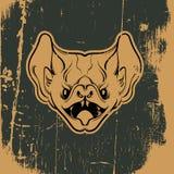 Иллюстрация вектора сердитой летучей мыши Стоковое Изображение RF
