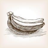Иллюстрация вектора стиля эскиза банана Стоковые Фото