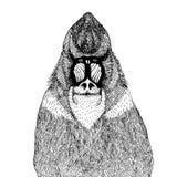 Иллюстрация вектора с абстрактной обезьяной Стоковые Фотографии RF