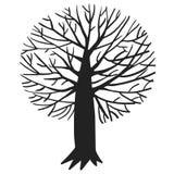 Иллюстрация вектора с деревом Стоковая Фотография RF