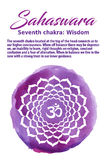 Иллюстрация вектора Chakra кроны Стоковые Изображения