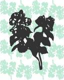 Иллюстрация ветви жасмина на покрашенной предпосылке Стоковое Изображение