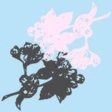 Иллюстрация ветви цветений яблока на backgraund бирюзы Стоковое Изображение