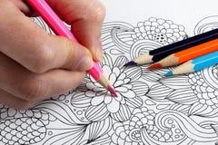 иллюстрация графика расцветки книги цветастая Стоковые Изображения