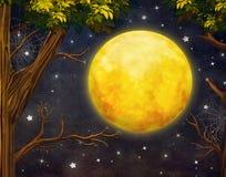 Иллюстрация деревьев и полнолуния с звездами на ночном небе Стоковые Изображения RF