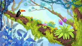 Иллюстрация леса джунглей toucan усаживания на дереве Vecto Стоковое фото RF