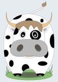 Милая корова с слепыми пятнами Стоковое Изображение