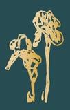 Иллюстрация желтой радужки на зеленой предпосылке Стоковое Изображение RF