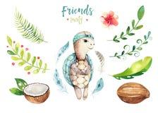 Иллюстрация животных младенца изолированная питомником для детей Чертеж boho акварели тропический, черепаха ребенка милая тропова Стоковые Изображения RF