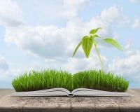 Иллюстрация зеленого ландшафта с ростком покрыла траву на открытой книге Стоковое Изображение RF