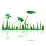 Иллюстрация зеленого цвета травы с цветком Стоковые Изображения RF