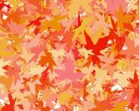Иллюстрация листьев бабьего лета стоковые фотографии rf