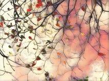Иллюстрация лист осени падая цифровая Силуэт ветви дерева Стоковое Изображение RF
