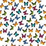 Иллюстрация красочной бабочки Стоковое Фото