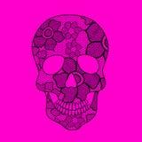 Иллюстрация кружевного черепа Стоковое фото RF