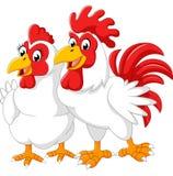 Иллюстрация курицы и петуха Стоковые Изображения